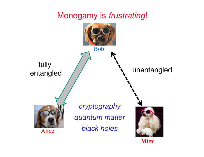 monagamy-for-dogs