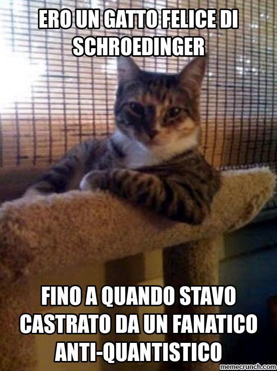 gatti-castrati-q4