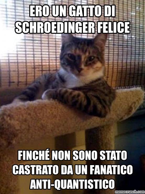 gatto-di-shroedinger