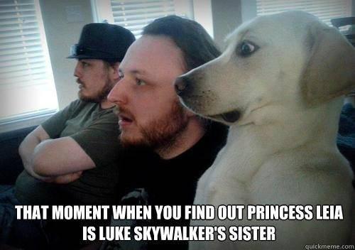dog-amazed