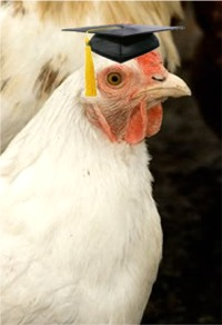 Coed hen at MIT 2031 graduation ceremonies very impressed by Prof. Chuang's piercing pronouncments