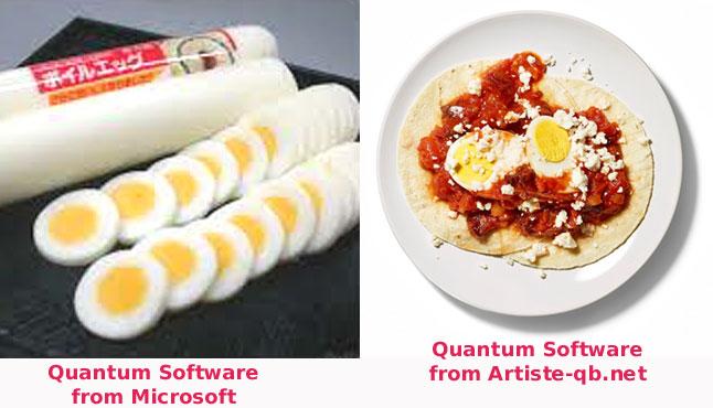 quantumsoftwaretwotypes